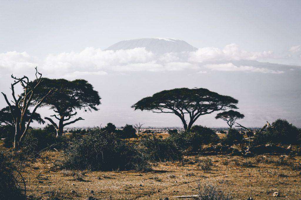 4 gave bestemmingen in Afrika